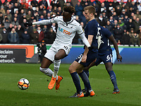 Football - 2017 / 2018 FA Cup - Quarter-Final: Swansea City vs. Tottenham Hotspur<br /> <br /> Tammy Abraham of Swansea City on the ball, at The Liberty Stadium.<br /> <br /> COLORSPORT/WINSTON BYNORTH