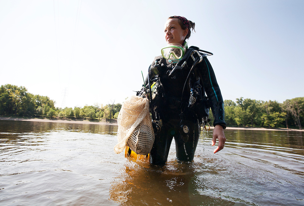 National Park Service biologist Allie Holdhusen exits the water with a bag of mussels she collected for observation in the Mississippi River near Pike Island August 14, 2015.  The mussels are counted, identified, and measured before they are returned to the river.