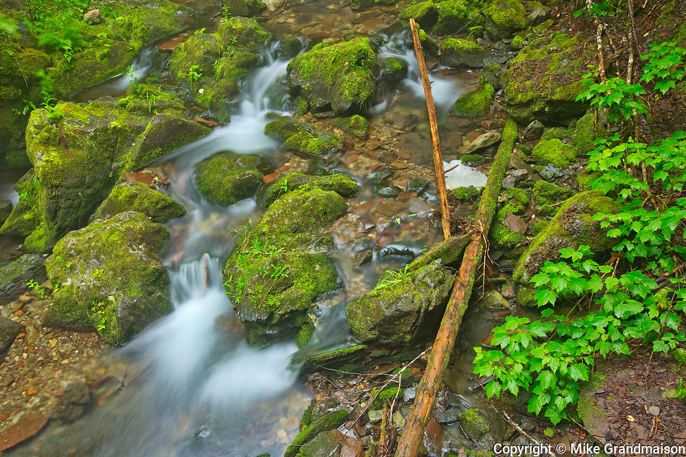 Dickson Falls<br />Fundy National Park<br />New Brunswick<br />Canada