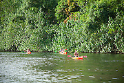 Kayakers, Wailua River, Kauai, Hawaii