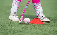 ROTTEDAM   - ILLUSTRATIE ,  Hockeyclub Feijenoord voor Jeugdfonds Sport en Cultuur.  COPYRIGHT  KOEN SUYK