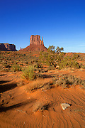 Red sand and juniper under Mitten Butte, Monument Valley Navajo Tribal Park, Arizona