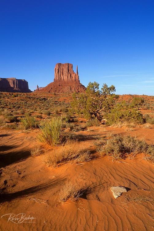 Red sand and juniper under Mitten Butte, Monument Valley Navajo Tribal Park, Arizona