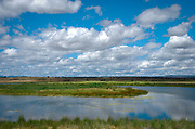 A marsh in a rural area showing refections of fluffy clouds in the water.
