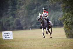 Arnold Rebecca, GER, Serpa 2<br /> World Equestrian Games - Tryon 2018<br /> © Hippo Foto - Sharon Vandeput<br /> 13/09/2018