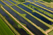 Nederland, Utrecht, De Bilt, 08-07-2010; Polder Westbroek met Westbroekse Zodden, laagveenmoerasgebied. Het moerasgebied is ontstaan door het winnen van turf..Peat swamp area, north of utrecht. The wetland was created by the extraction of peat..luchtfoto (toeslag), aerial photo (additional fee required).foto/photo Siebe Swart