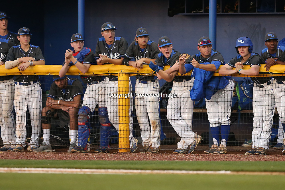 The Warren Central dugout cheers on a teammate a bat hoping to get a run on the scoreboard against Tupelo on Thursday night.