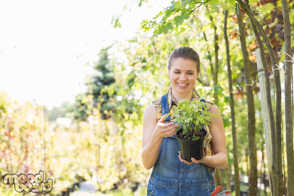 Happy woman looking at potted plant in garden