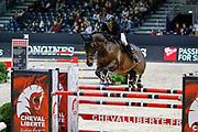 The Movie actor Guillaume Canet on Babeche during the Equestrian EQUITA Lyon 2017, CSI2 Prix Laiterie de Montaigu on November 2, 2017 at Eurexpo Lyon in Chassieu, near Lyon, France - Photo Romain Biard / Isports / ProSportsImages / DPPI