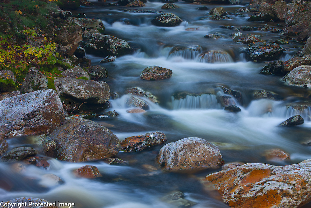 Clear streaming water is softened via a long aperture setting, somewhere in Washington's Olympic National Park.