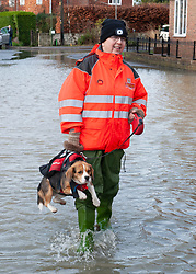 ©Licensed to London News Pictures 22/12/2019. <br /> Yalding ,UK. June Chapman (post mistress) and dog Poppy on Lees road, Yalding Village.  The River Medway and River Beult have bursts their banks causing severe flooding in Yalding village,Kent. Photo credit: Grant Falvey/LNP