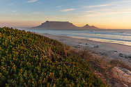 https://Duncan.co/table-mountain-from-sunset-beach