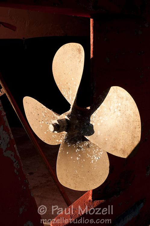 Rusty propeller in an old fishing boat in dry dock, Gloucester, MA
