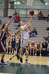 10 January 2009: Christina Solari takes a lay up. The Lady Titans of Illinois Wesleyan University downed the and Lady Thunder of Wheaton College by a score of 101 - 57 in the Shirk Center on the Illinois Wesleyan Campus in Bloomington Illinois.