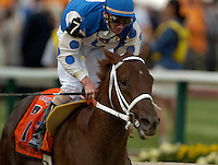 BALTIMORE, MD - Smarty Jones with Stewart Elliott aboard wins the 2004 Preakness Stakes at Pimlico race track May 15, 2004