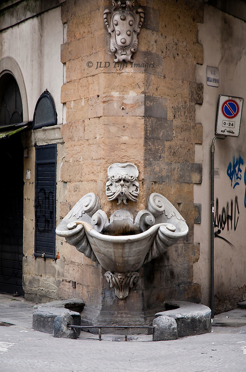 This amusing fountain, probably 17th or even 18th century, stands on a corner in the Oltrarno near a bus stop I often used at the end of the day to get back to my b&b.  Its grotesque mask always made me smile.  Its mouth has a metal spout which indicates safe drinking water.  The six balls on the escutcheon above are a Medici heraldic statement, six being typical of the 16th century usage.