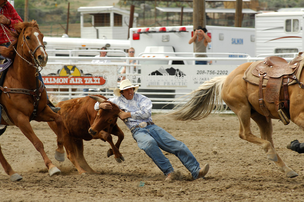 Steer Wrestling, Cowboy, teen, teenager, Rodeo, Salmon, Idaho