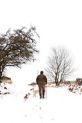 Southern Upland Way. older man wearing black hat and grey fleece walks through snowy countryside with two small and one bigger white dog. The man has a walking stick and there is a winter tree on the path.