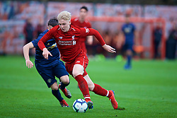 KIRKBY, ENGLAND - Saturday, January 26, 2019: Liverpool's Luis Longstaff during the FA Premier League match between Liverpool FC and Manchester United FC at The Academy. (Pic by David Rawcliffe/Propaganda)