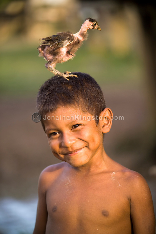 A young Miskito boy playfully shows off with a small native chicken on his head in Krin Krin, Nicaragua, located on the Rio Coco. Residents along the Rio Coco were considered Contra allies during the war, and were forced to evacuate in masses when their crops and homes were burned by Sandinista government military. After they were allowed to return, Hurricane Mitch hit them in 1998, which flooded the river to around 30 feet above normal. Residents continue to struggle to make a livelihood.