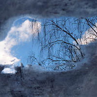Mirroring sky on the puddle water surface with tree and clouds reflexion / ws037