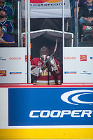 REGINA, SK - MAY 27: Evan Fitzpatrick #31 of Acadie-Bathurst Titan stands in the tunnel awaiting entry to the ice against the Regina Pats at the Brandt Centre on May 27, 2018 in Regina, Canada. (Photo by Marissa Baecker/CHL Images)