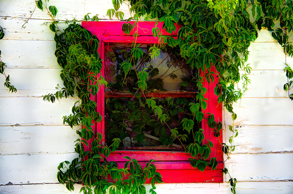 A Beatiful Red Window In The Little Red House In Kent Texas