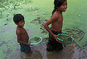 A Cambodian brother and sister clear lichen from a pond, near Phnom Penh.
