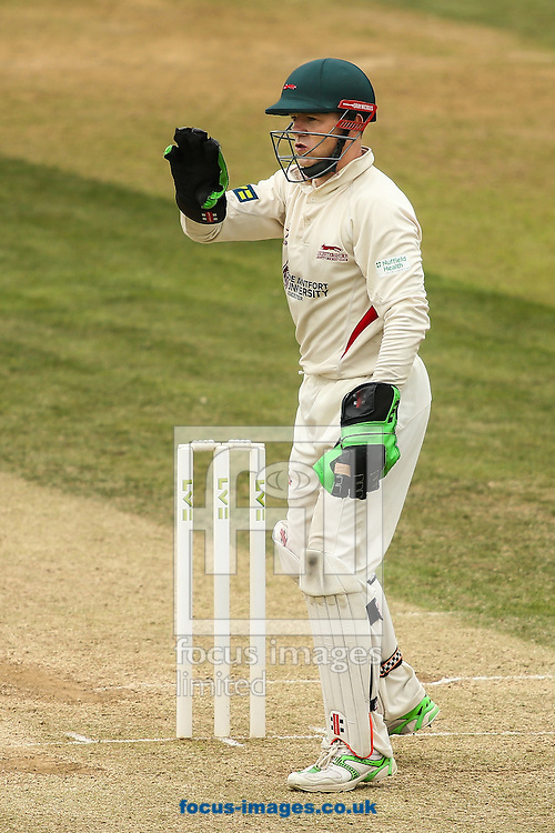 Niall O'Brien of Leicestershire during the LV County Championship Div Two match at the County Ground, Northampton<br /> Picture by Andy Kearns/Focus Images Ltd 0781 864 4264<br /> 23/08/2015