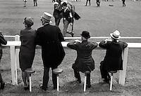 Royal Derby Day horse races part of British Social Season