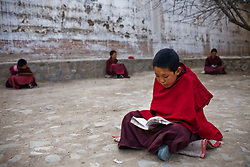 Tibet New Year - China - Edward Wong<br /> Child monks study at Rongwo monastery  (Longwu in Chinese) in Rebkong (Tongren in Chinese), Qinghai province in China, February 23, 2009. Photo by Shiho Fukada for The New York Times