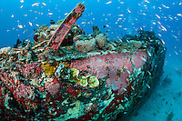 Reef Fish abound on Airplane Wreck....Shot in British Virgin Islands