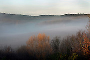 early morning fog in rural landscape