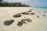Sunny tropical  beach in Chapera island shore. Las Perlas archipelago, Panama province, Central America.