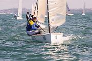 Max SALMINEN (SWE33), Finn Gold Cup 2015, Takapuna, Auckland New Zealand. 26/11/2015