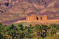 Maroc, Haut-Atlas, vallée du Draa, Kasbah Tamnougalt // Morocco, High Atlas, Draa valley, Kasbah Tamnougalt