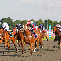 Kempton 25th June