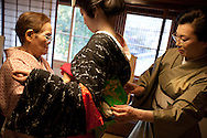 Three trainee geisha, known as 'maiko' until they make their debut appearance, who have been hired and are being trained by the local authorities, undergo lesson in tying their kimono's obi (belt), in Shimoda, Japan, on Wednesday 14th December 2011. .The three geisha are Awagiku (in white/silver kimono), Rinka (black kimono), Iroha (pink kimono). Their teachers are Nami (green kimono), Hanamaru (geisha in purple kimono) and their teacher of shamisen musical instrument is Chikako (wearing pink kimono, gold glasses)..The three trainee geisha were selected after applying for the positions which were advertised by Shimoda city council via the 'Hello Work' employment office. The Shimoda city council hope to keep the geisha tradition alive within their town by the appointment of the girls, and the girls will undertake geisha duties at local festivals and for tour groups and tourists.