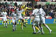 Picture by Paul Chesterton/Focus Images Ltd.  07904 640267.11/02/12.Grant Holt of Norwich scores his sides equalising goal and celebrates during the Barclays Premier League match at Liberty Stadium, Swansea.