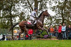 Gerber Caroline, SUI, Tresor de Chignan CH<br /> CCIO 4* Boekelo 2019<br /> © Hippo Foto - Leanjo de Koster<br />  12/10/2019