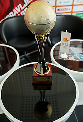Trophy for Slovenian Basketball National Champion prior to the Final matches of Liga Nova KBM 2017/18 between KK Petrol Olimpija and KK Krka Novo mesto, on May 17, 2018, in Ljubljana, Slovenia. Photo by Vid Ponikvar / Sportida