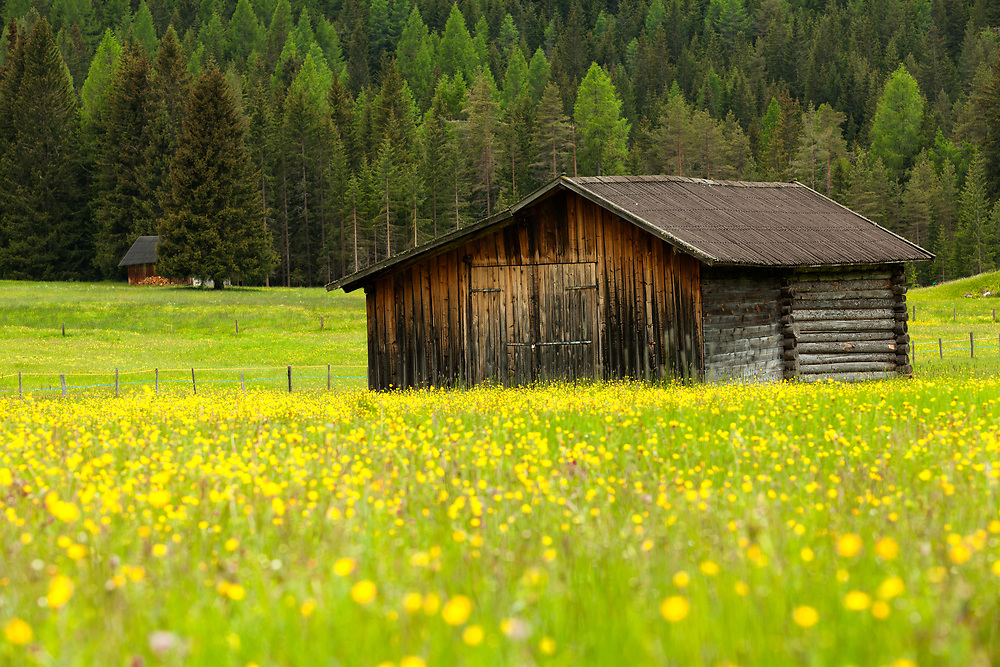 Alpine Barn in meadow