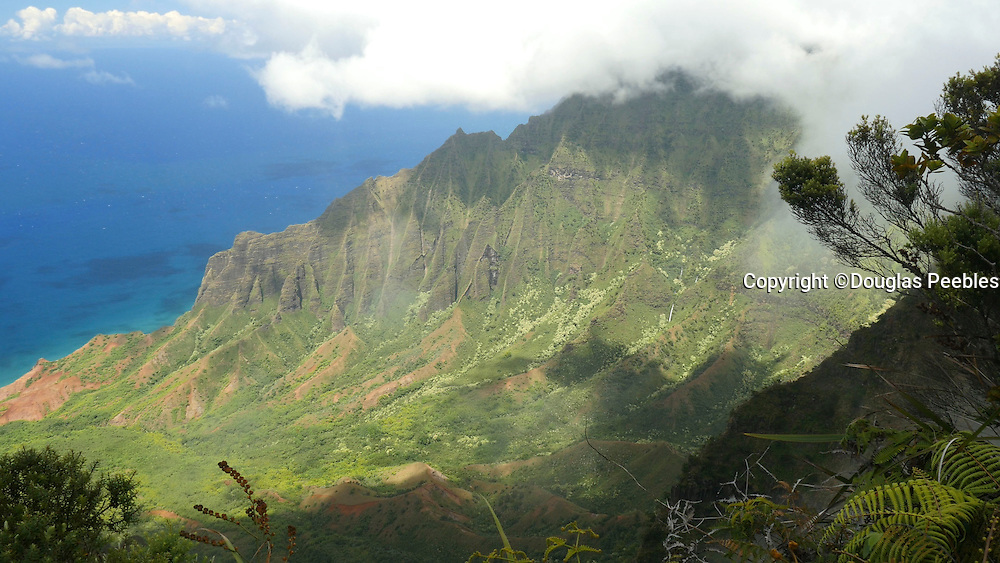Kalalau Lookout, Napali Coast, Kokee State Park,  Kauai, Hawaii