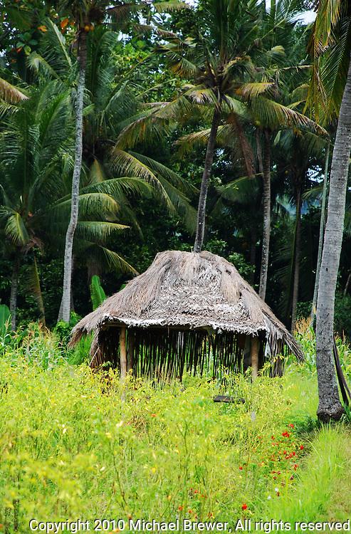 A simple hut in a jungle clearing in Bali, Indonesia.