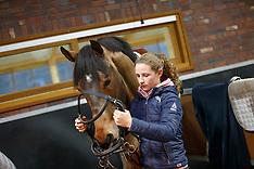Stal Thijssen - 2015