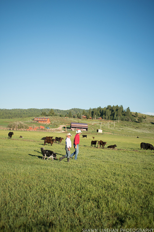 Joan Marsted and Gary Mosher of Panther Ranch in Donnelly, Idaho