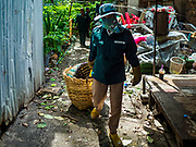 23 AUGUST 2017 - BANGKOK, THAILAND: A Bangkok city worker removes a basket of trash from Pom Mahakan. Bangkok city officials this week started cleaning up the area around cremation site for Bhumibol Adulyadej, the Late King of Thailand. Work started by cleaning Pom Mahakan, a historic fort about two kilometers northeast of the cremation site. They are going to scrub and paint the fort's historic exterior walls, which were built in the late 18th century. The King, who died on 13 October 2016, will be cremated on 26 October 2017.      PHOTO BY JACK KURTZ