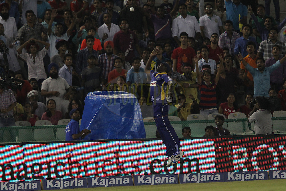 Elton CHIGUMBURA of the Barbados Tridents leaps to no avail during match 5 of the Oppo Champions League Twenty20 between the Kings XI Punjab and the Barbados Tridents held at the Punjab Cricket Association Stadium, Mohali, India on the 20th September 2014<br /> <br /> Photo by:  Ron Gaunt / Sportzpics/ CLT20<br /> <br /> <br /> Image use is subject to the terms and conditions as laid out by the BCCI/ CLT20.  The terms and conditions can be downloaded here:<br /> <br /> http://sportzpics.photoshelter.com/gallery/CLT20-Image-Terms-and-Conditions-2014/G0000IfNJn535VPU/C0000QhhKadWcjYs