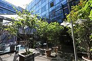 EyeEm, BCG, Gamma, Office, Paris, France