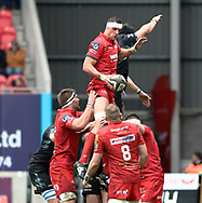 Scarlets' Aaron Shingler claims the lineout<br /> <br /> Photographer Simon King/Replay Images<br /> <br /> Guinness PRO14 Round 19 - Scarlets v Glasgow Warriors - Saturday 7th April 2018 - Parc Y Scarlets - Llanelli<br /> <br /> World Copyright © Replay Images . All rights reserved. info@replayimages.co.uk - http://replayimages.co.uk